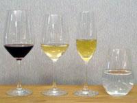 Schott Zwiesel Vina