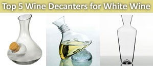 The best wine decanters for white wine