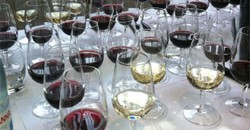 How to improve your wine knowledge