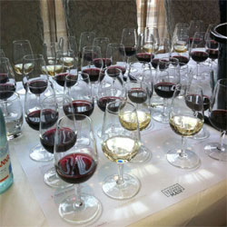 ISO Style Tasting Glasses | Wine Knowledge