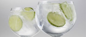 The perfect Gin and Tonic glass