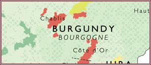 burgundy-front-banner