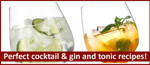 Perfect cocktail and gin and tonic recipes!