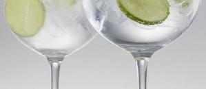 gin-tonic-glasses