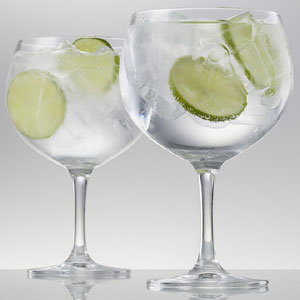 Gin and Tonic Glass - Mother's Day Gifts
