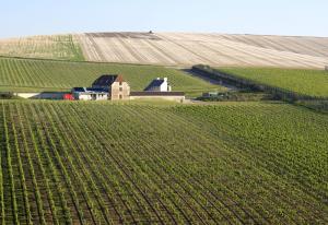 rathfinny-wine-estate-001