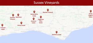 sussex-vineyards-002