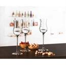 Montana Cuvee Grappa / Port / Sherry Glass - Set of 6