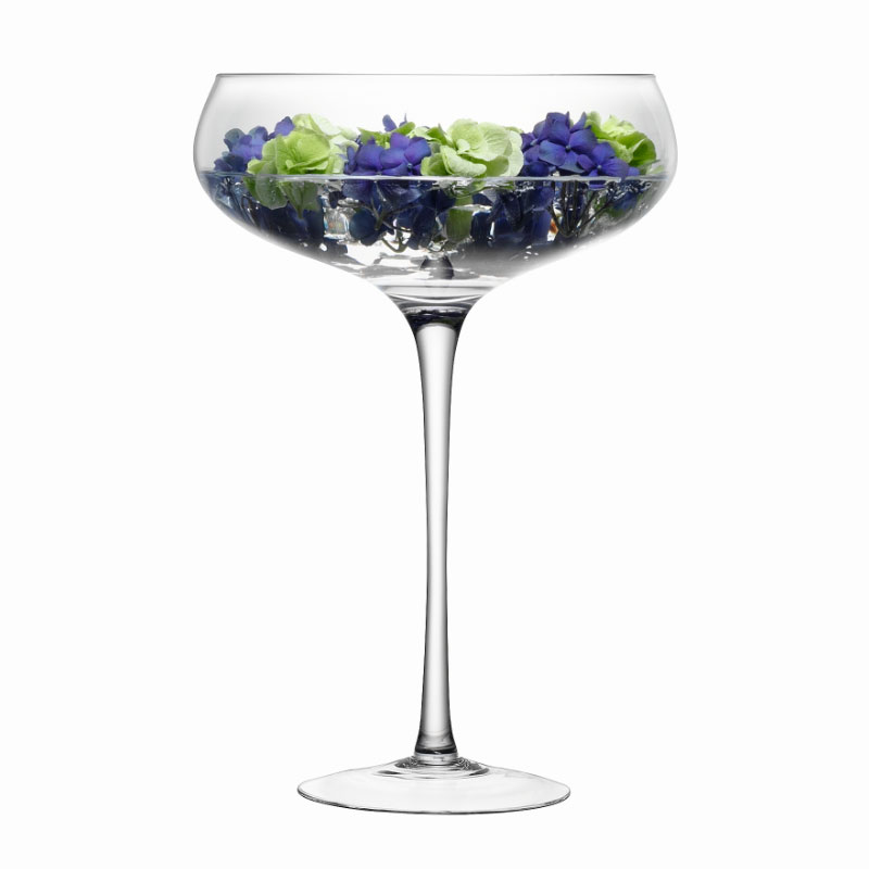 Lsa maxa giant display champagne saucer litres