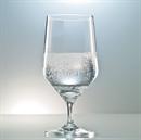 Schott Zwiesel Pure Beer / Water Glasses - Set of 6