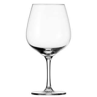 Schott Zwiesel Congresso Burgundy Glass - Set of 6