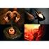Zalto Restaurant - Denk Art Champagne Glass / Tulip