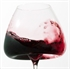 Zieher Vision Balanced Wine Glass - Set of 2