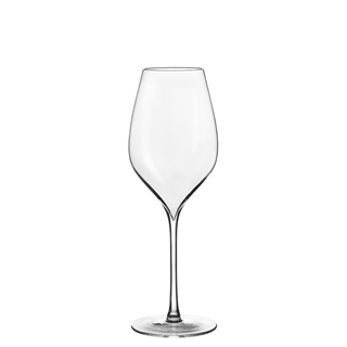 Lehmann Glass A. Lallement Champagne / Sparkling Wine Glass 300ml - Set of 6