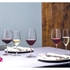 Schott Zwiesel Ivento Red Wine Glass - Set of 6
