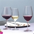 Schott Zwiesel Ivento Burgundy Glass - Set of 6