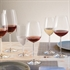 Schott Zwiesel Diva Burgundy / Beaujolais Glass - Set of 6