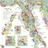 De Long's Wine Map of Italy - Wine Regions