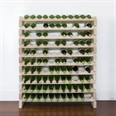 Modularack Wooden Wine Rack 110 Bottle - Natural Pine 10H x 11W