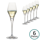 Glass & Co In Vino Veritas Prosecco Wine Glass - Set of 6